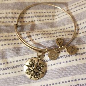 Beautiful charmed bracelet